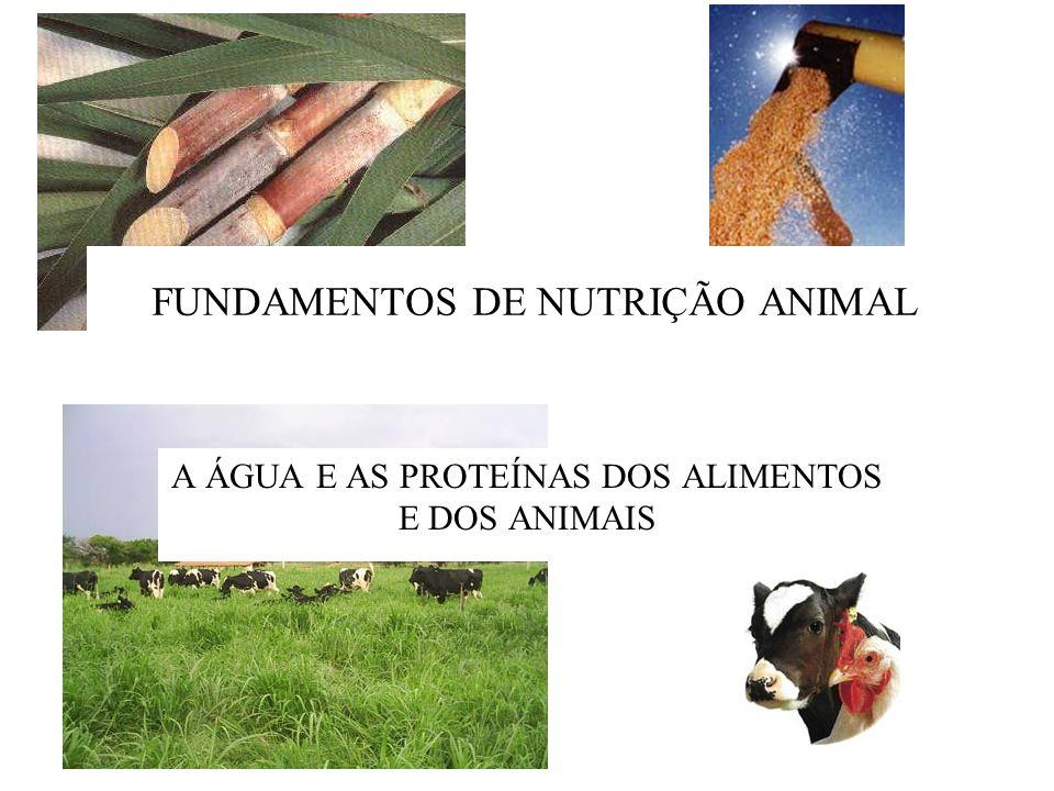 FUNDAMENTOS DE NUTRIÇÃO ANIMAL A ÁGUA E AS PROTEÍNAS DOS ALIMENTOS E DOS ANIMAIS