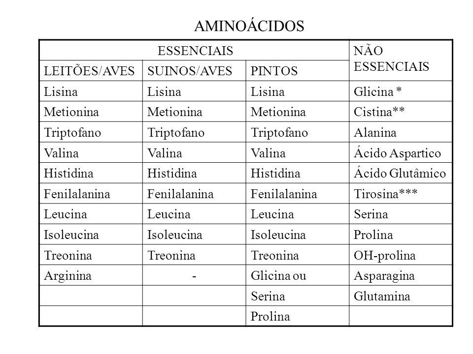 ESSENCIAISNÃO ESSENCIAIS LEITÕES/AVESSUINOS/AVESPINTOS Lisina Glicina * Metionina Cistina** Triptofano Alanina Valina Ácido Aspartico Histidina Ácido