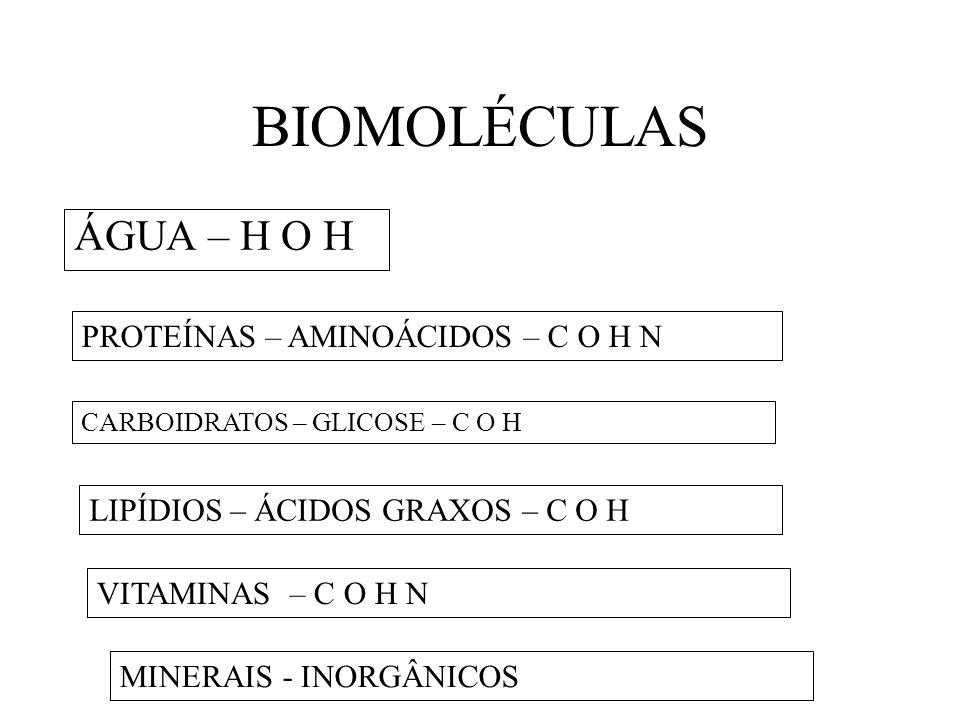 BIOMOLÉCULAS ÁGUA – H O H PROTEÍNAS – AMINOÁCIDOS – C O H N LIPÍDIOS – ÁCIDOS GRAXOS – C O H CARBOIDRATOS – GLICOSE – C O H VITAMINAS – C O H N MINERA