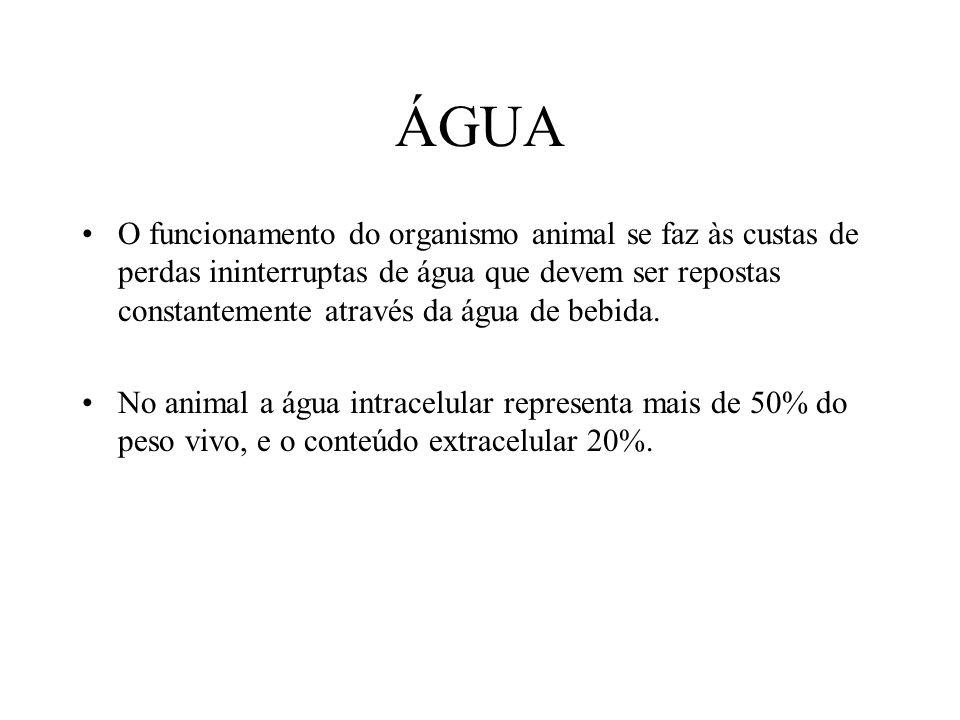 ÁGUA O funcionamento do organismo animal se faz às custas de perdas ininterruptas de água que devem ser repostas constantemente através da água de beb