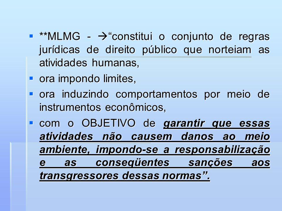 **MLMG - constitui o conjunto de regras jurídicas de direito público que norteiam as atividades humanas, **MLMG - constitui o conjunto de regras juríd