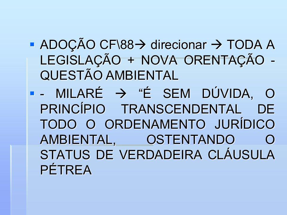 ADOÇÃO CF\88 direcionar TODA A LEGISLAÇÃO + NOVA ORENTAÇÃO - QUESTÃO AMBIENTAL ADOÇÃO CF\88 direcionar TODA A LEGISLAÇÃO + NOVA ORENTAÇÃO - QUESTÃO AM