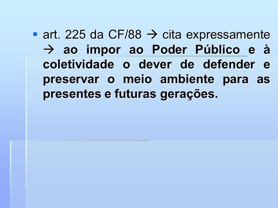art. 225 da CF/88 cita expressamente ao impor ao Poder Público e à coletividade o dever de defender e preservar o meio ambiente para as presentes e fu