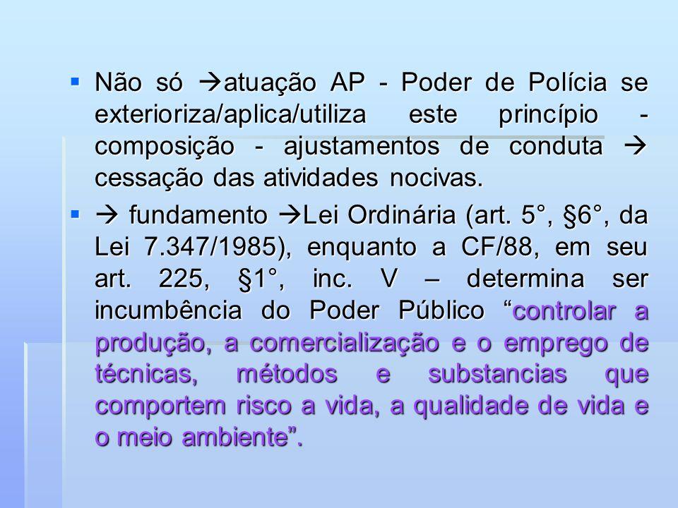 Não só atuação AP - Poder de Polícia se exterioriza/aplica/utiliza este princípio - composição - ajustamentos de conduta cessação das atividades nociv