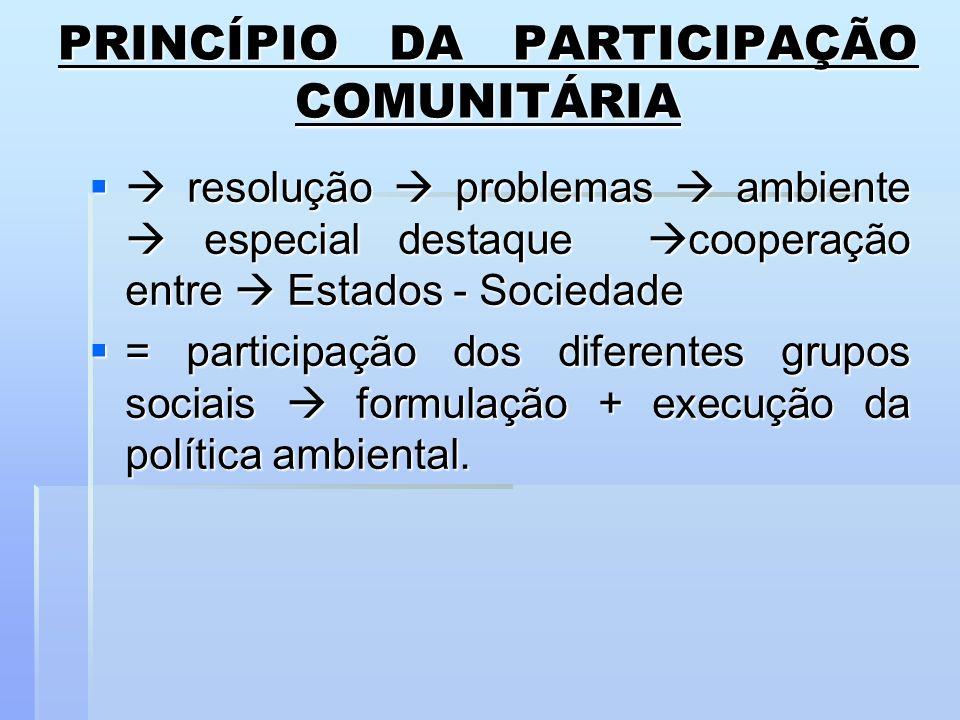 PRINCÍPIO DA PARTICIPAÇÃO COMUNITÁRIA resolução problemas ambiente especial destaque cooperação entre Estados - Sociedade resolução problemas ambiente