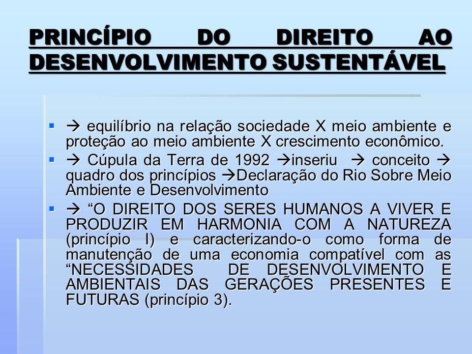 PRINCÍPIO DO DIREITO AO DESENVOLVIMENTO SUSTENTÁVEL equilíbrio na relação sociedade X meio ambiente e proteção ao meio ambiente X crescimento econômic