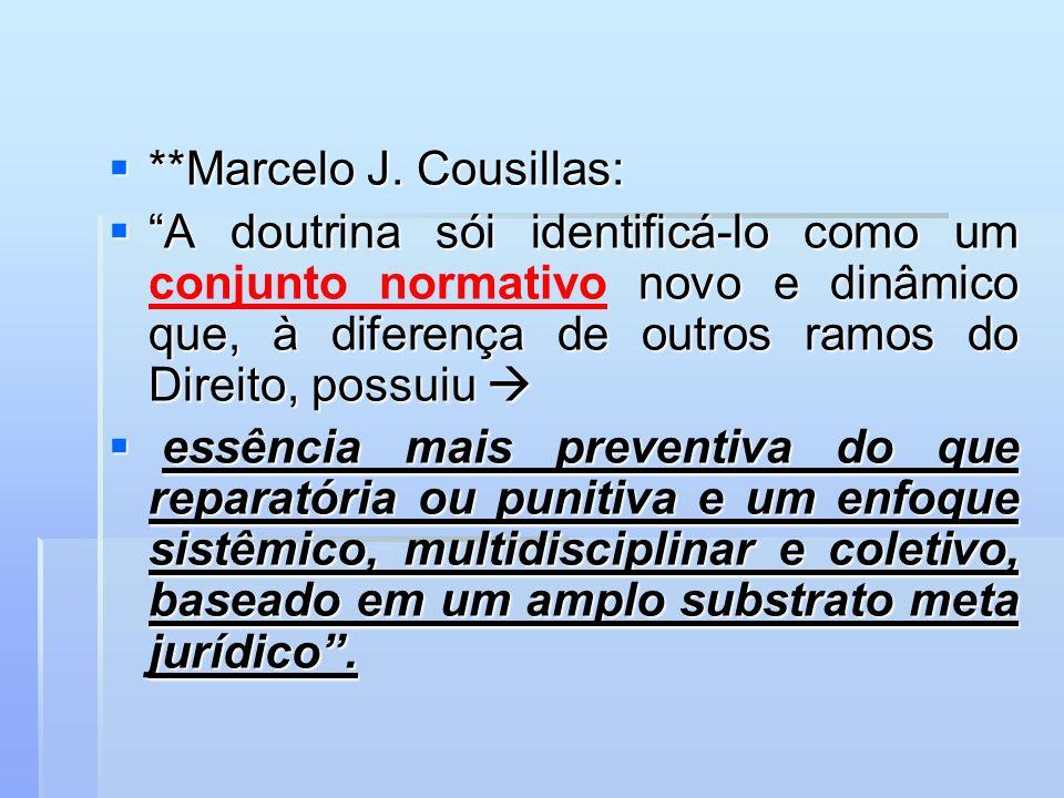 **Marcelo J. Cousillas: **Marcelo J. Cousillas: A doutrina sói identificá-lo como um novo e dinâmico que, à diferença de outros ramos do Direito, poss