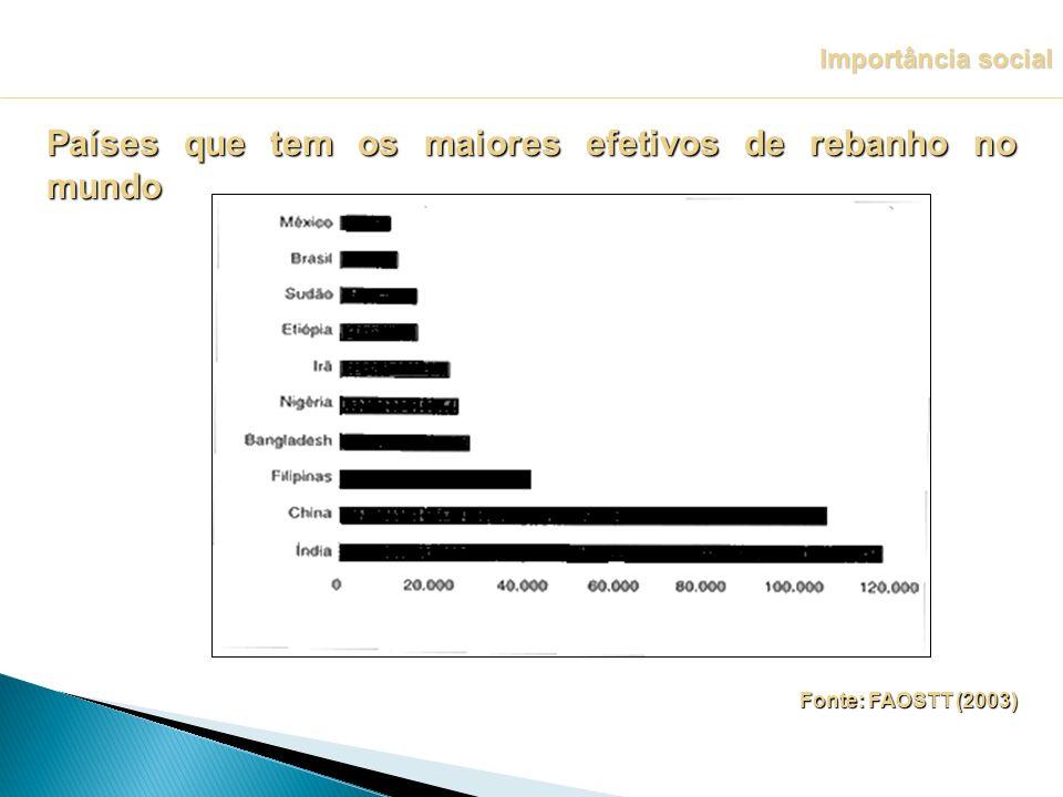 Fonte: FAOSTT (2003) Importância social Países que tem os maiores efetivos de rebanho no mundo