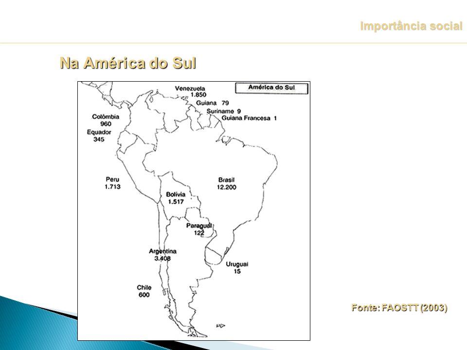 Fonte: FAOSTT (2003) Importância social Na América do Sul