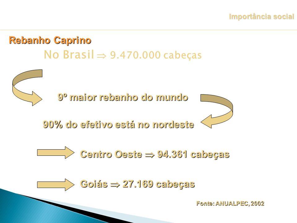 No Brasil 9.470.000 cabeças 90% do efetivo está no nordeste 9º maior rebanho do mundo Centro Oeste 94.361 cabeças Goiás 27.169 cabeças Fonte: ANUALPEC