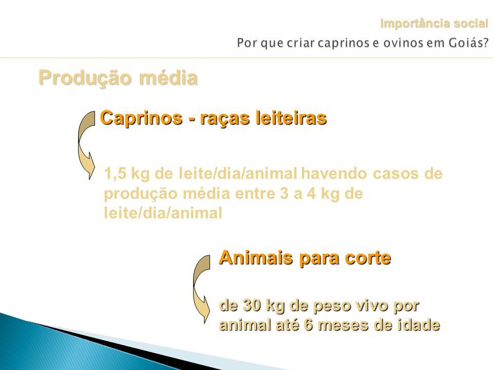 Produção média Caprinos - raças leiteiras 1,5 kg de leite/dia/animal havendo casos de produção média entre 3 a 4 kg de leite/dia/animal Animais para c