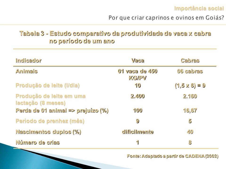 Fonte: Adaptado a partir de CADENA (2002) Tabela 3 - Estudo comparativo da produtividade de vaca x cabra no período de um ano Importância social 81 Nú