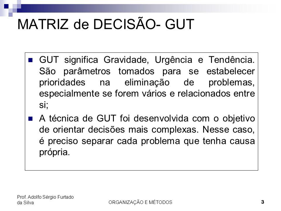 ORGANIZAÇÃO E MÉTODOS 3 Prof. Adolfo Sérgio Furtado da Silva MATRIZ de DECISÃO- GUT GUT significa Gravidade, Urgência e Tendência. São parâmetros toma