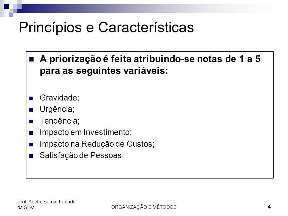 ORGANIZAÇÃO E MÉTODOS 4 Prof. Adolfo Sérgio Furtado da Silva Princípios e Características A priorização é feita atribuindo-se notas de 1 a 5 para as s