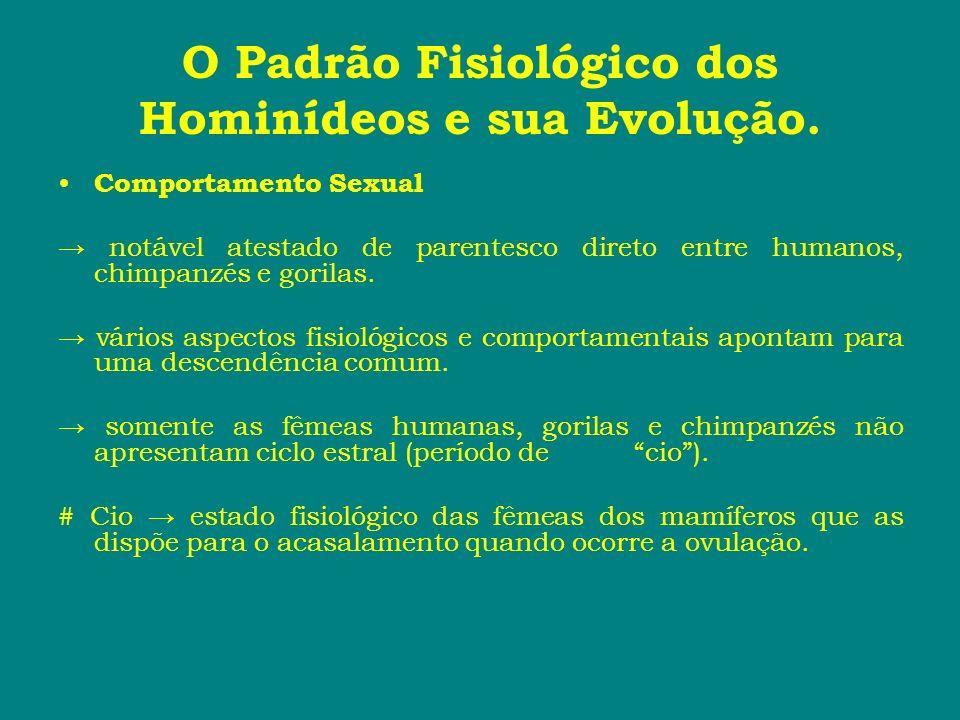 O Padrão Fisiológico dos Hominídeos e sua Evolução. Comportamento Sexual notável atestado de parentesco direto entre humanos, chimpanzés e gorilas. vá