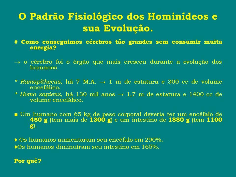 O Padrão Fisiológico dos Hominídeos e sua Evolução. # Como conseguimos cérebros tão grandes sem consumir muita energia? o cérebro foi o órgão que mais