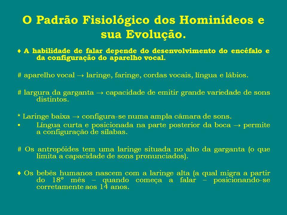 O Padrão Fisiológico dos Hominídeos e sua Evolução. A habilidade de falar depende do desenvolvimento do encéfalo e da configuração do aparelho vocal.