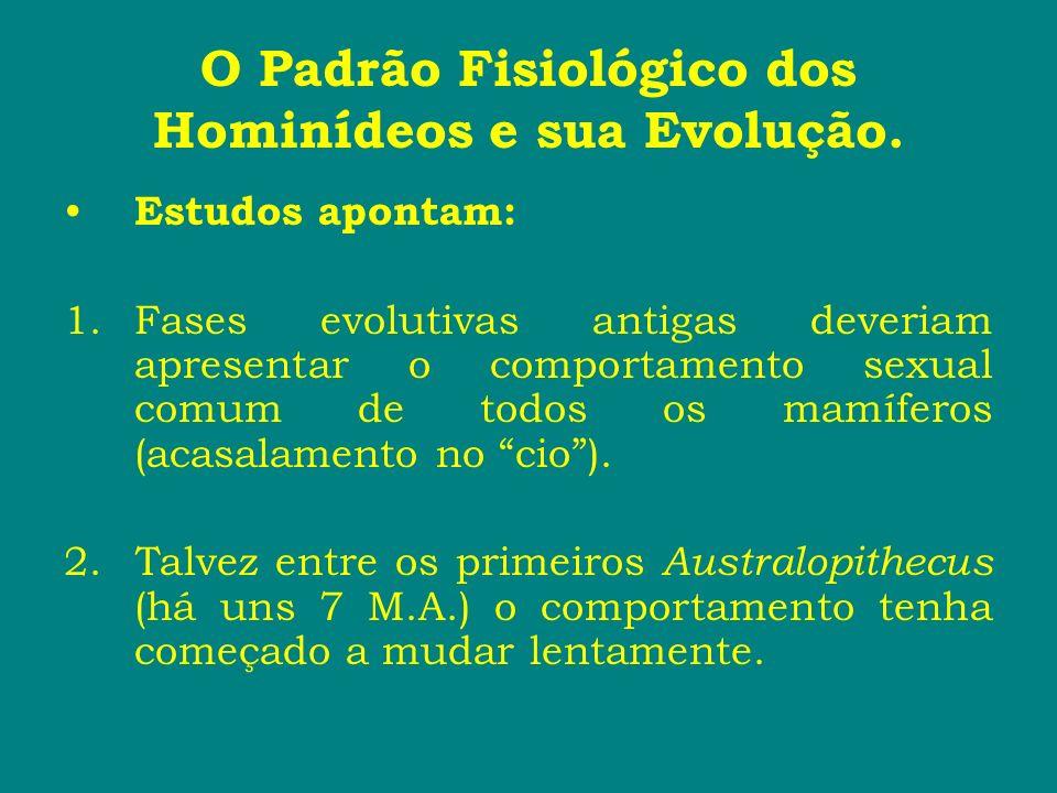 O Padrão Fisiológico dos Hominídeos e sua Evolução. Estudos apontam: 1.Fases evolutivas antigas deveriam apresentar o comportamento sexual comum de to