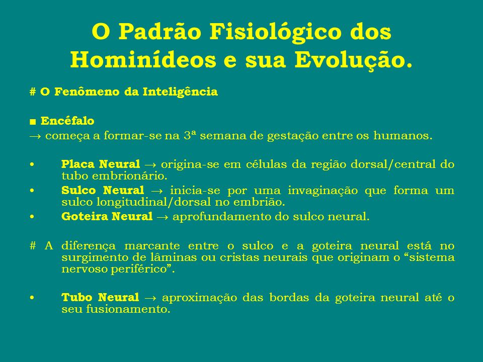 O Padrão Fisiológico dos Hominídeos e sua Evolução. # O Fenômeno da Inteligência Encéfalo começa a formar-se na 3ª semana de gestação entre os humanos