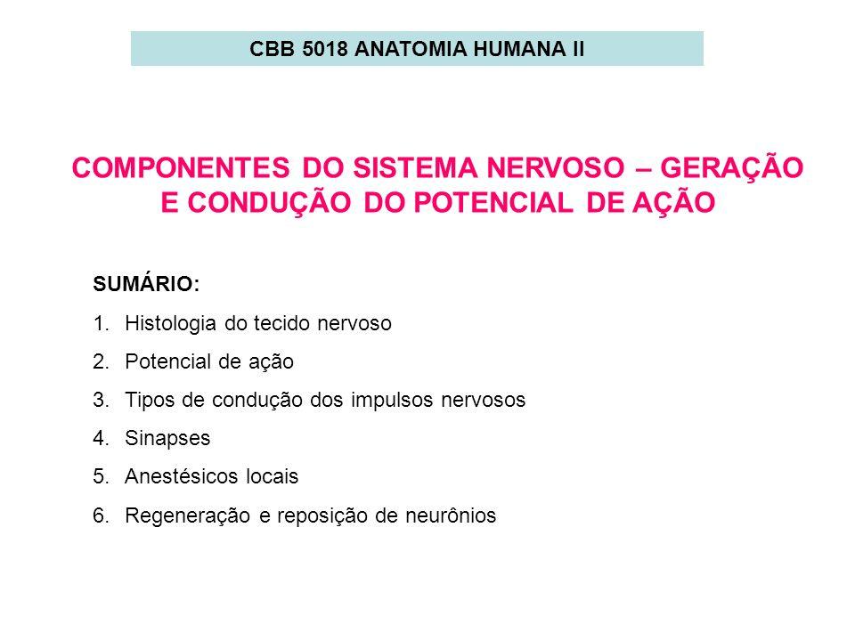 COMPONENTES DO SISTEMA NERVOSO – GERAÇÃO E CONDUÇÃO DO POTENCIAL DE AÇÃO SUMÁRIO: 1.Histologia do tecido nervoso 2.Potencial de ação 3.Tipos de conduç
