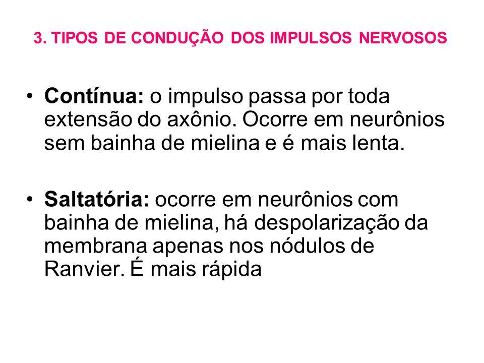 Contínua: o impulso passa por toda extensão do axônio. Ocorre em neurônios sem bainha de mielina e é mais lenta. Saltatória: ocorre em neurônios com b