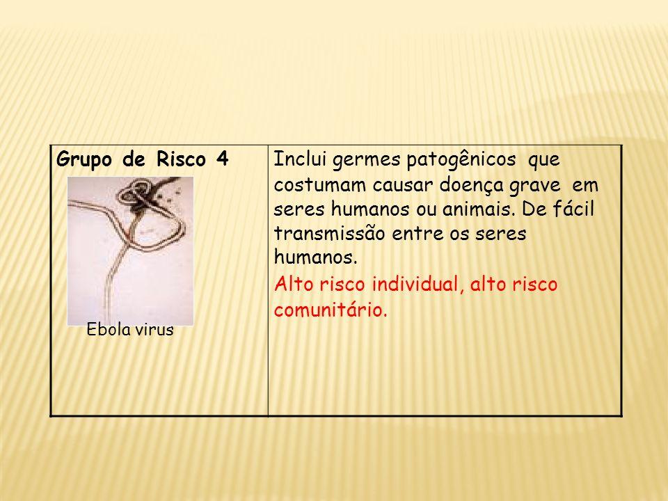 Grupo de Risco 4 Ebola virus Inclui germes patogênicos que costumam causar doença grave em seres humanos ou animais. De fácil transmissão entre os ser