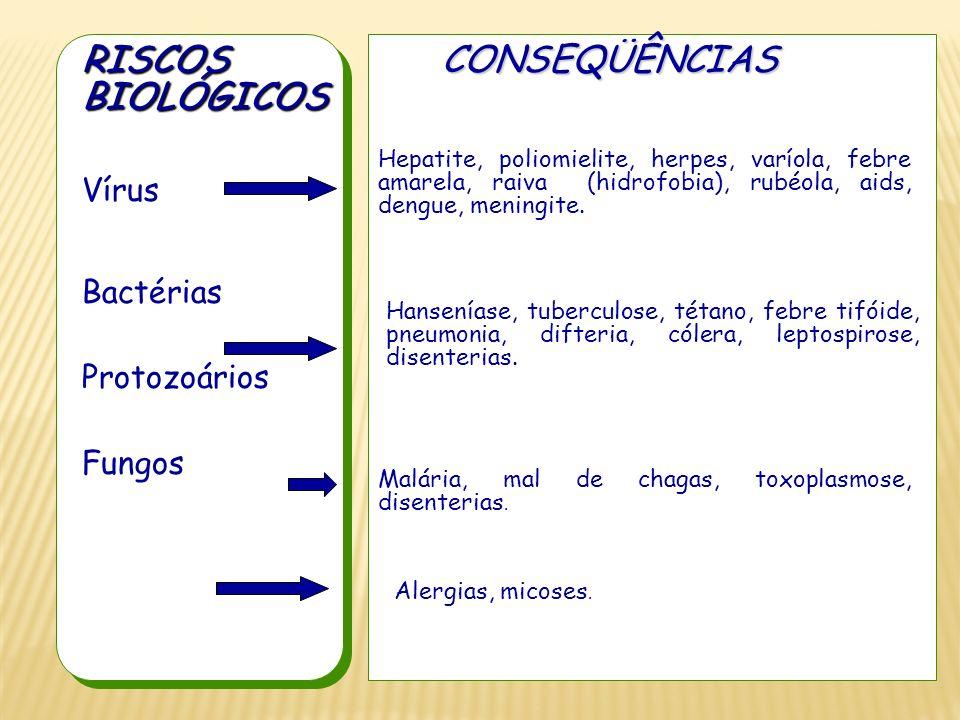 Vírus Bactérias Protozoários Fungos RISCOSBIOLÓGICOSCONSEQÜÊNCIAS Hepatite, poliomielite, herpes, varíola, febre amarela, raiva (hidrofobia), rubéola,