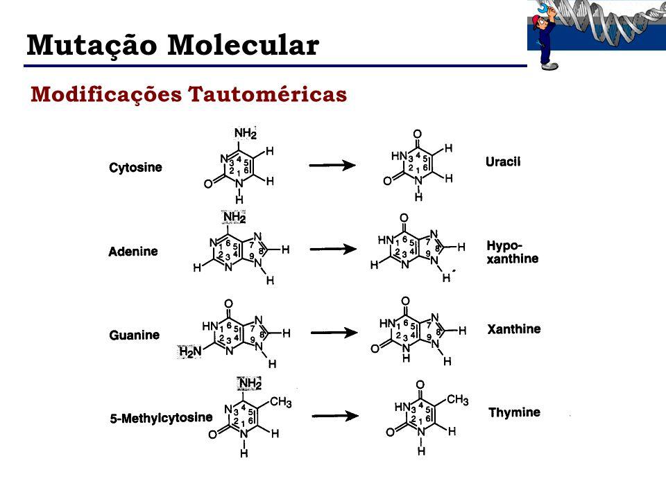 Mutação Molecular Modificações Tautoméricas