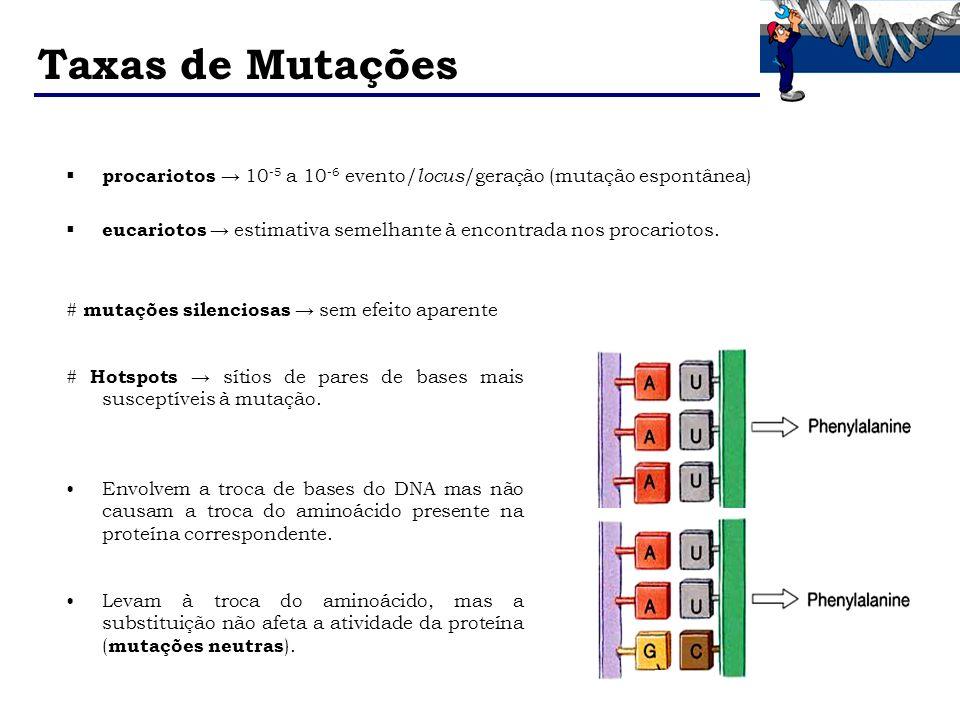 Taxas de Mutações procariotos 10 -5 a 10 -6 evento/ locus /geração (mutação espontânea) eucariotos estimativa semelhante à encontrada nos procariotos.