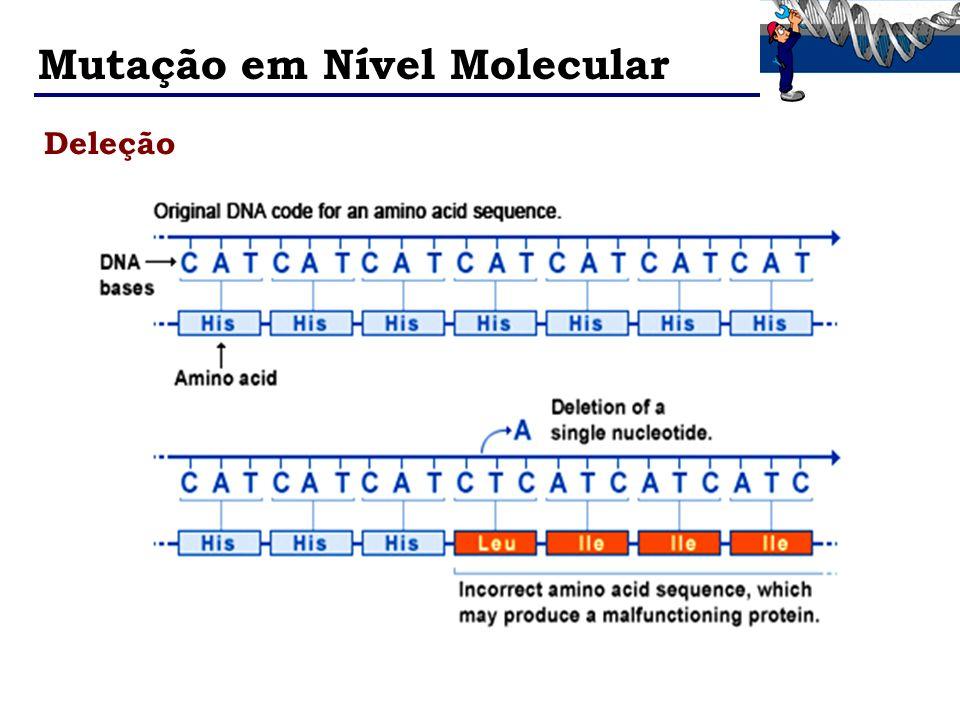 Mutação em Nível Molecular Deleção