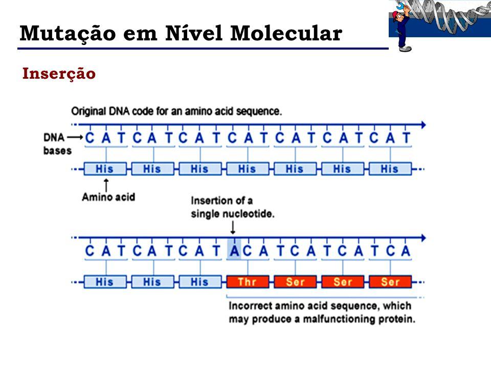 Mutação em Nível Molecular Inserção