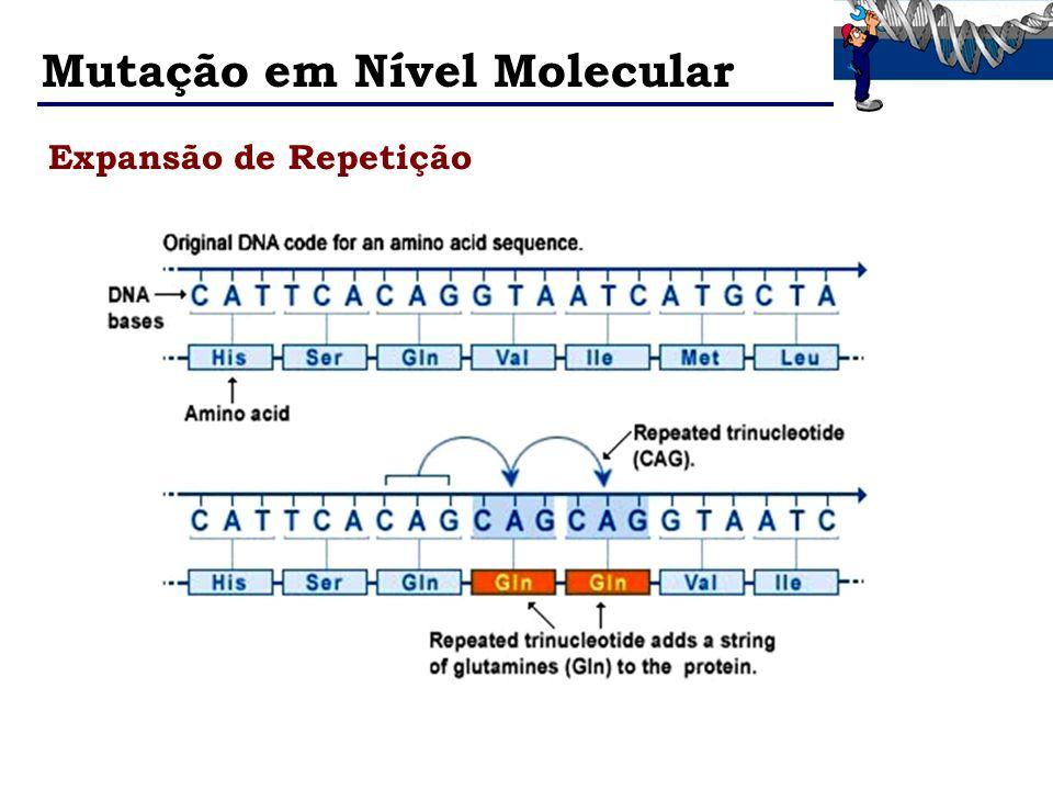 Mutação em Nível Molecular Expansão de Repetição