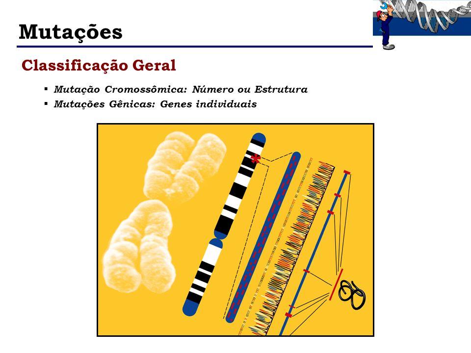 Mutações Classificação Geral Mutação Cromossômica: Número ou Estrutura Mutações Gênicas: Genes individuais