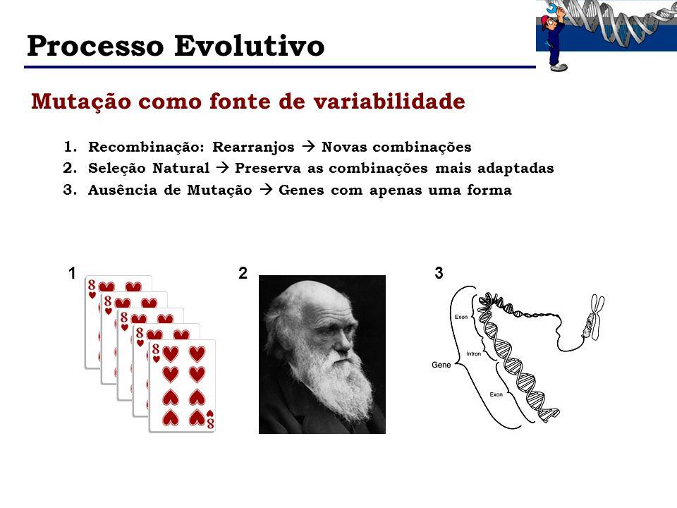 Processo Evolutivo 1.Recombinação: Rearranjos Novas combinações 2.Seleção Natural Preserva as combinações mais adaptadas 3.Ausência de Mutação Genes c