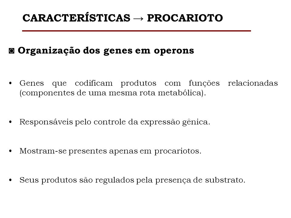 Organização dos genes em operons Genes que codificam produtos com funções relacionadas (componentes de uma mesma rota metabólica). Responsáveis pelo c