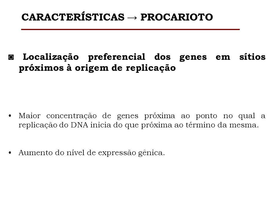 Localização preferencial dos genes em sítios próximos à origem de replicação Maior concentração de genes próxima ao ponto no qual a replicação do DNA