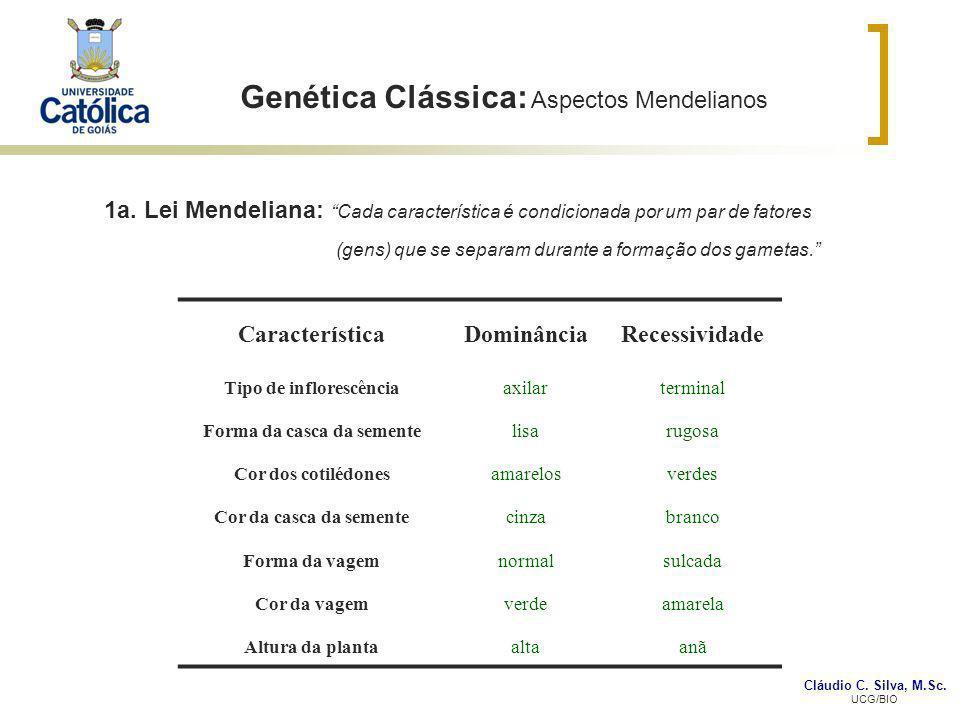 Cláudio C. Silva, M.Sc. UCG/BIO Genética Clássica: Aspectos Mendelianos CaracterísticaDominânciaRecessividade Tipo de inflorescênciaaxilarterminal For