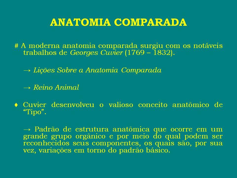 ANATOMIA COMPARADA # A moderna anatomia comparada surgiu com os notáveis trabalhos de Georges Cuvier (1769 – 1832). Lições Sobre a Anatomia Comparada