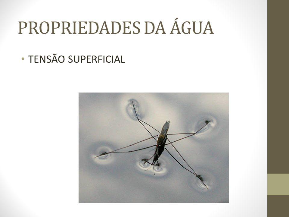 PROPRIEDADES DA ÁGUA TENSÃO SUPERFICIAL