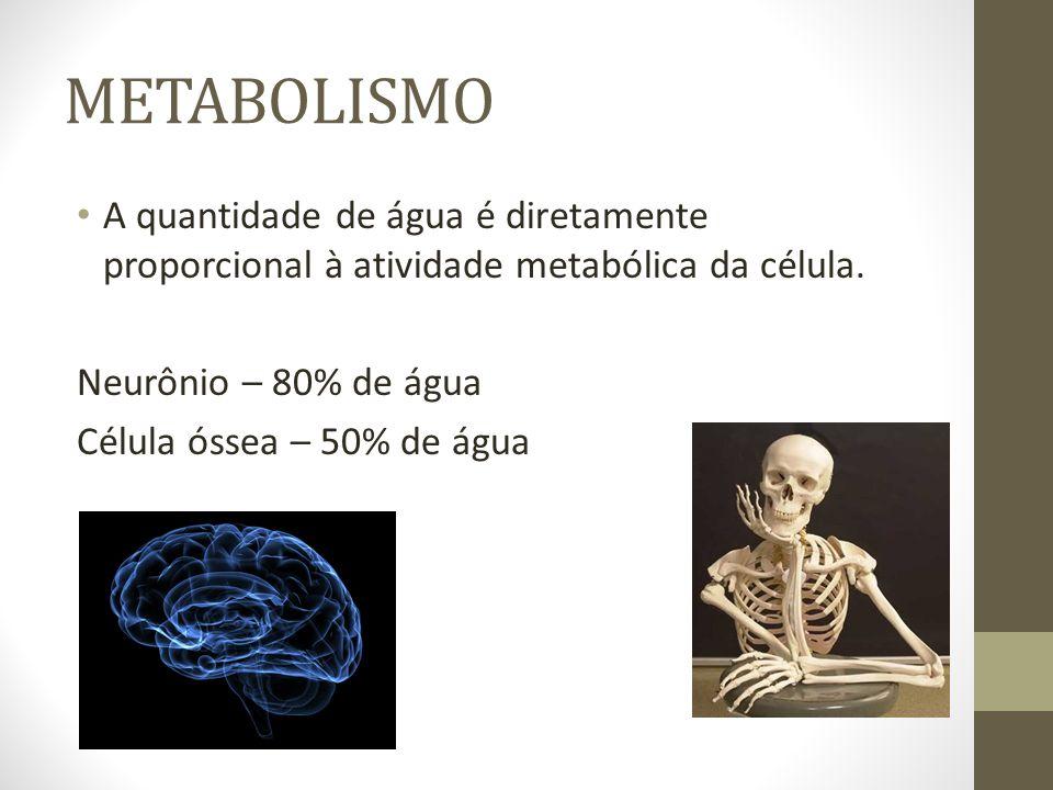 METABOLISMO A quantidade de água é diretamente proporcional à atividade metabólica da célula. Neurônio – 80% de água Célula óssea – 50% de água