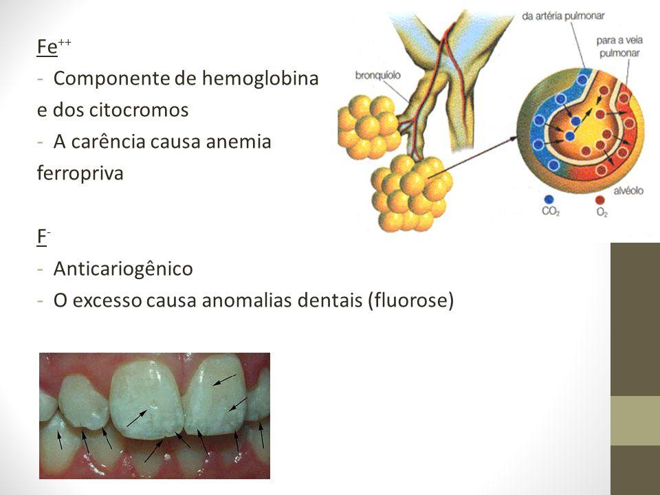 Fe ++ -Componente de hemoglobina e dos citocromos -A carência causa anemia ferropriva F-F- -Anticariogênico -O excesso causa anomalias dentais (fluoro