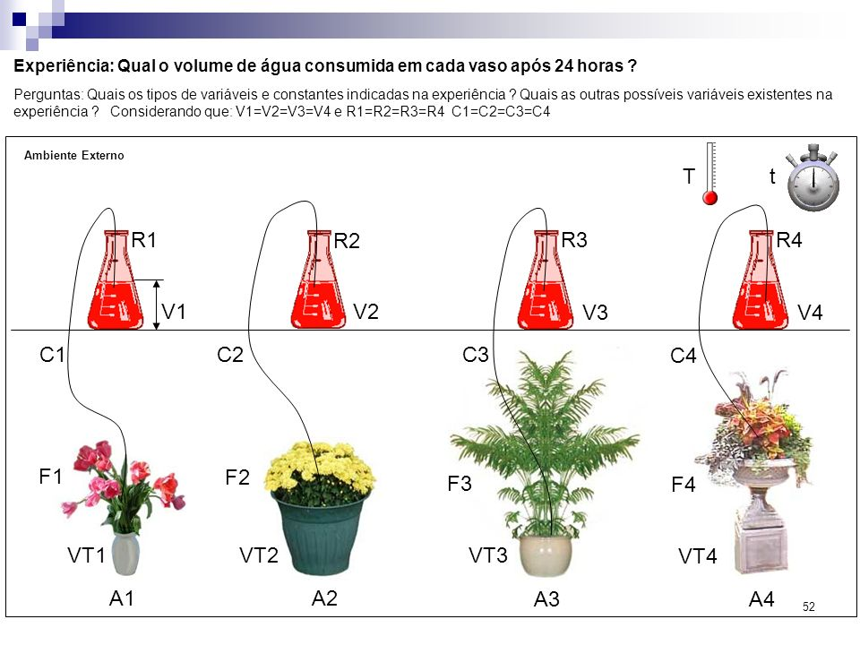 52 Experiência: Qual o volume de água consumida em cada vaso após 24 horas ? Perguntas: Quais os tipos de variáveis e constantes indicadas na experiên