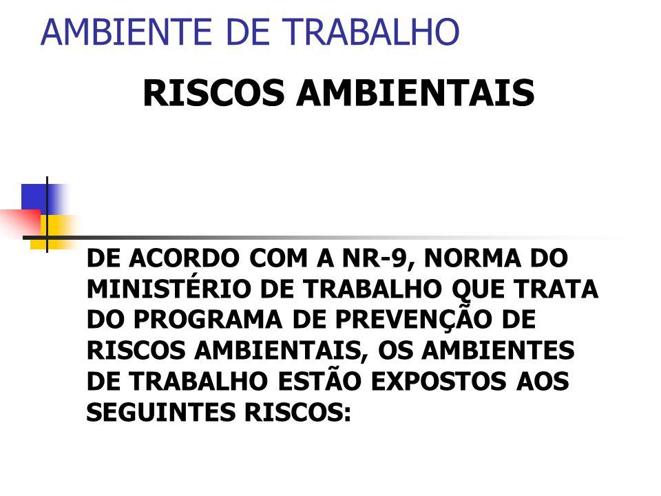 AMBIENTE DE TRABALHO RISCOS AMBIENTAIS DE ACORDO COM A NR-9, NORMA DO MINISTÉRIO DE TRABALHO QUE TRATA DO PROGRAMA DE PREVENÇÃO DE RISCOS AMBIENTAIS,