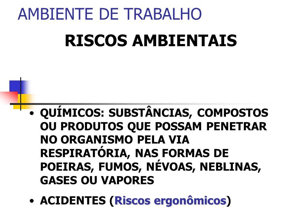 AMBIENTE DE TRABALHO RISCOS AMBIENTAIS QUÍMICOS: SUBSTÂNCIAS, COMPOSTOS OU PRODUTOS QUE POSSAM PENETRAR NO ORGANISMO PELA VIA RESPIRATÓRIA, NAS FORMAS