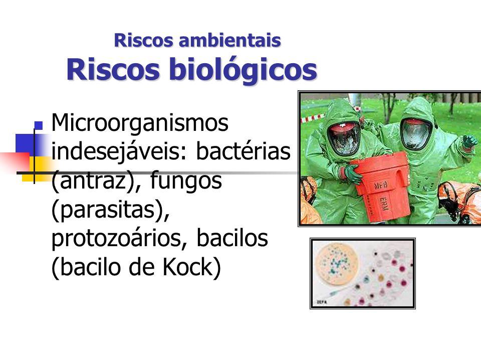 Riscos ambientais Riscos biológicos Microorganismos indesejáveis: bactérias (antraz), fungos (parasitas), protozoários, bacilos (bacilo de Kock)
