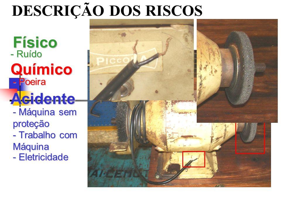 DESCRIÇÃO DOS RISCOS Físico - Ruído Químico - Poeira Acidente - Máquina sem proteção - Eletricidade - Trabalho com Máquina