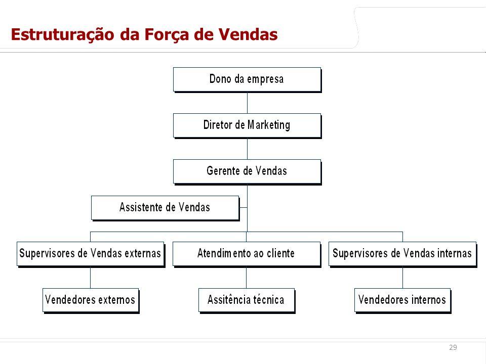 euler@imvnet.com.br | www.slideshare.net/eulernogueira 29 Estruturação da Força de Vendas