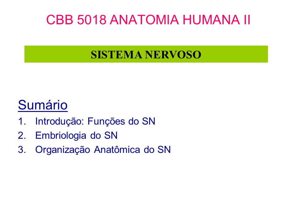 CBB 5018 ANATOMIA HUMANA II Sumário 1.Introdução: Funções do SN 2.Embriologia do SN 3.Organização Anatômica do SN SISTEMA NERVOSO
