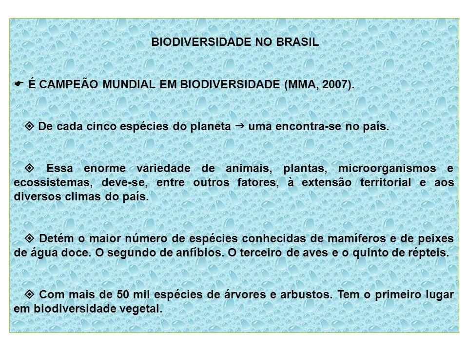 BIODIVERSIDADE NO BRASIL É CAMPEÃO MUNDIAL EM BIODIVERSIDADE (MMA, 2007). De cada cinco espécies do planeta uma encontra-se no país. Essa enorme varie