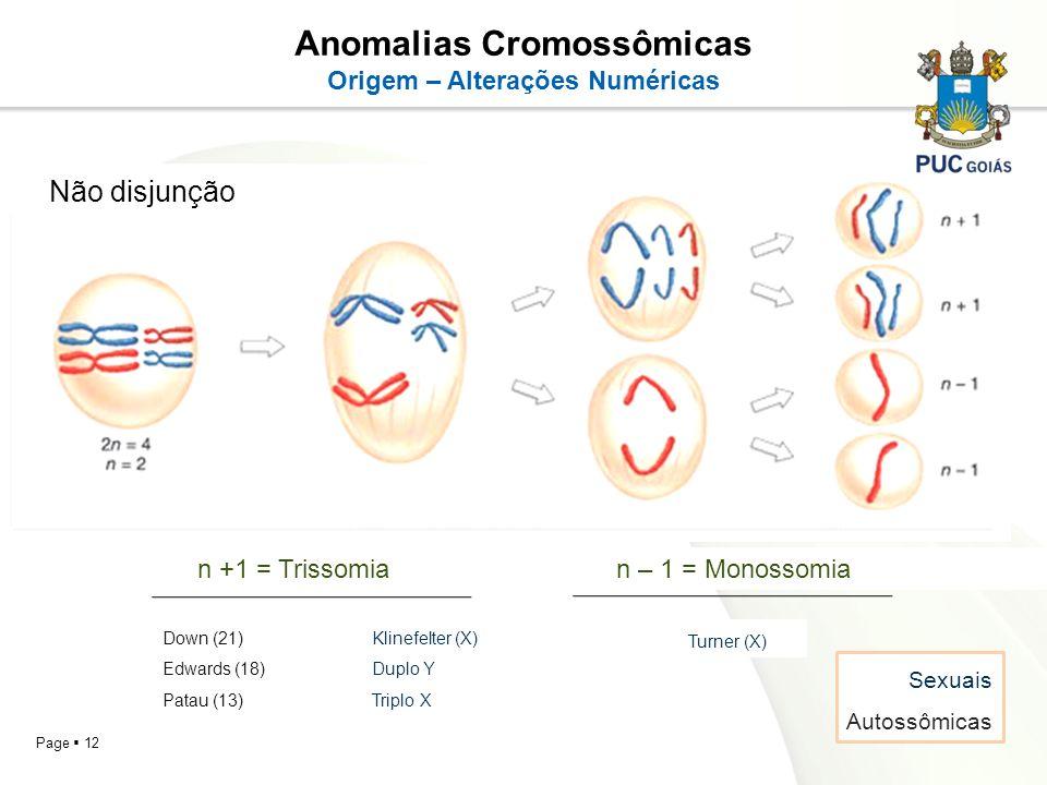 Page 12 Anomalias Cromossômicas Origem – Alterações Numéricas Não disjunção n +1 = Trissomian – 1 = Monossomia Down (21)Klinefelter (X) Edwards (18)Du